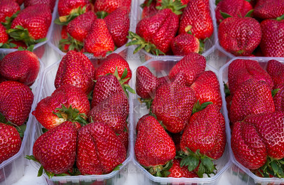 Strawberries in boxes at market