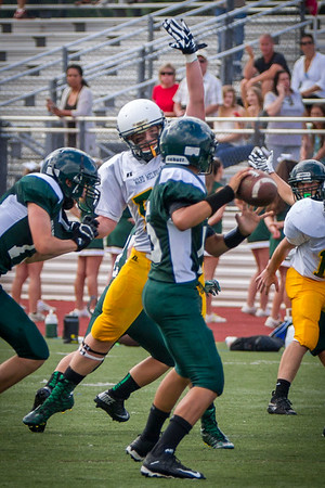 2015 Ward Melville JV Football