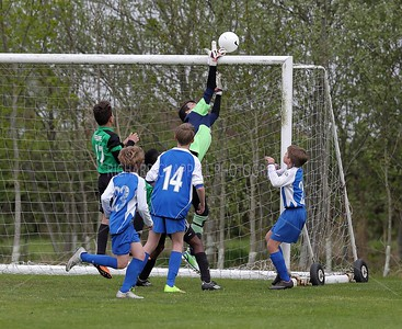 WILTS-FA-YOUTH_786