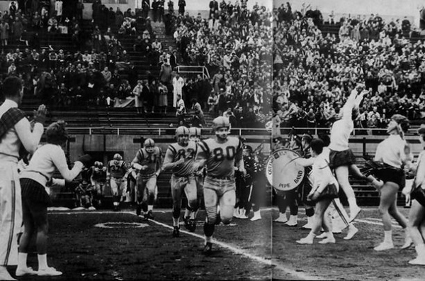 Sixties The Gaels Golden Age.jpg