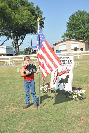 FOOTHILLS JUBILEE WALKING HORSE SHOW 6-25-16  DALLAS NC