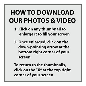 _AAA - How to download our photographs