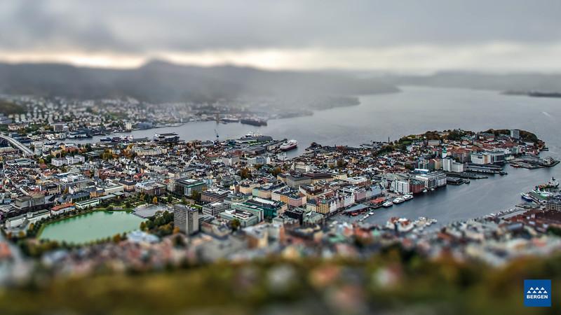Bergen miniatyr