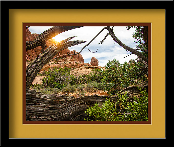 """The Rise"" (Captured in Utah, at Arches National Park, 2014)"