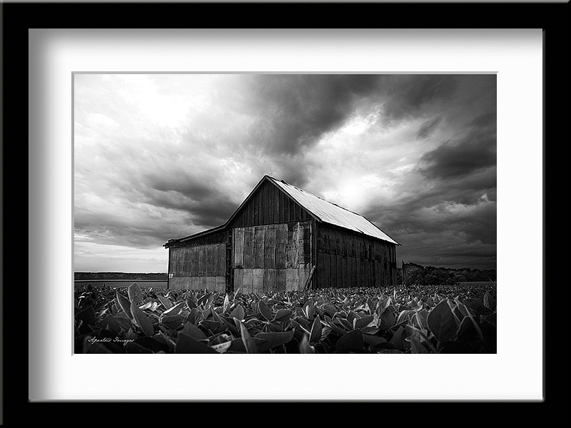 """Brewing Storm"" (Captured in Otterville, IL, 2014)"