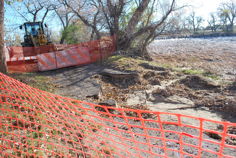 In a few places along the reopened part of the trail at Riverside Park, orange, plastic fencing diverts walkers and joggers around places where the old improved path was destroyed by the flood. To the right, the flattened cattails show the path the rushing waters took through the park. (Jenni Grubbs/Fort Morgan Times)
