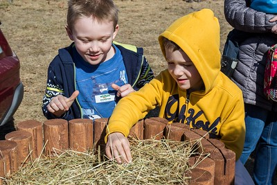 Logan Lewis, 8, and Landen Lewis, 7, search for a hedgehog during the Next Level Church's Helicopter Egg Drop and Family Event at the Rochester Fairgrounds Sunday. [Scott Patterson/Fosters.com]