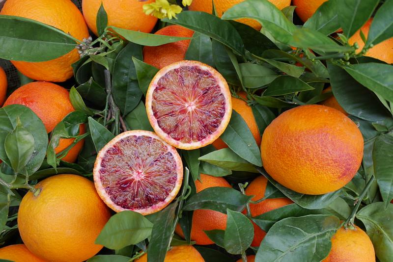 Sanguinelli: légèrement plus acide que l'orange commune, très juteuse