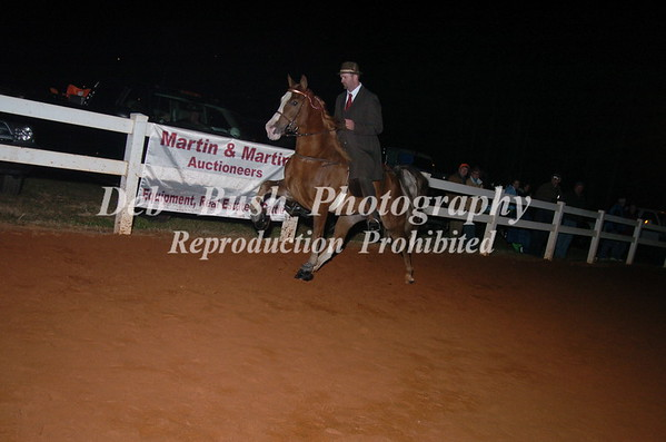CLASS 21 PONY AMATEUR 18 YRS & OLDER ( SPECIALTY )