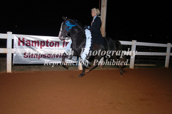 CLASS 33- LITE SHOD AMATEUR OWNED & TRAINED, CANTER