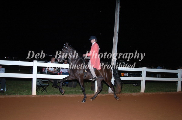 CLASS 32 LITE SHOD AMATEUR OWNED AND TRAINED CANTER