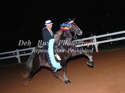 CLASS 34 WALKING HORSE CHAMPIONSHIP