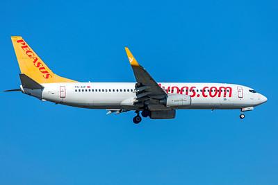 Pegasus Boeing 737-82R TC-AIP 10-21-18