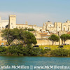 Avignon & Palace of the Popes from Rhone river.