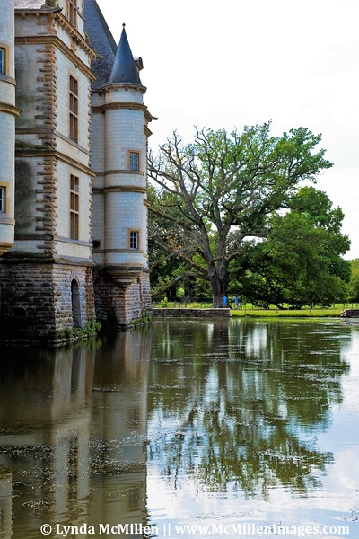 300 year old oak and moat of Castle Cormatin.