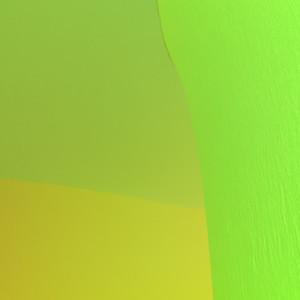 Ernesto Neto 14th Biennale de Lyon - Floating Worlds - MAC Lyon