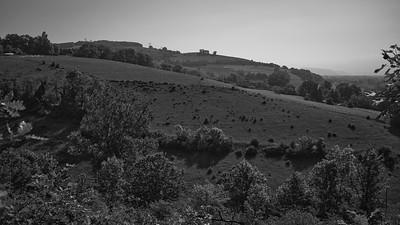 20200517 Bocsozel randonnée (Gillonnay/Auvergne-Rhône-Alpes/France - N45°25.147' E5°18.332' - Altitude : 533.60)
