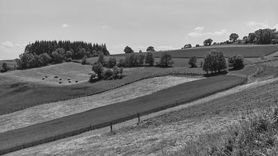 20200531 Courzieu La Brévenne randonnée (Filtre vert) (Route des Crêtes/Courzieu/Auvergne-Rhône-Alpes/France - N45°43.879' E4°36.144' - Altitude : 814m)