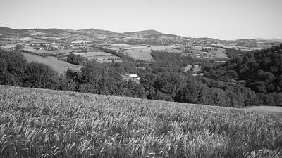 20200531 Courzieu La Brévenne randonnée (Filtre vert) (Chemin de la Voûte/Courzieu/Auvergne-Rhône-Alpes/France - N45°44.735' E4°33.804' - Altitude : 410m)