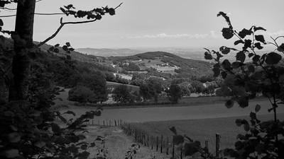 20200531 Courzieu La Brévenne randonnée (Filtre vert) (Route des Crêtes/Courzieu/Auvergne-Rhône-Alpes/France - N45°43.747' E4°36.034' - Altitude : 819m)
