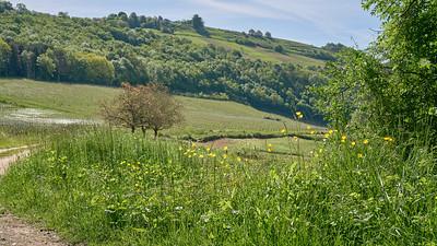 """Poncin et sa région - Randonnée - 46°5'17"""" N 5°26'3"""" E - 371,6m (Poncin - Auvergne-Rhône-Alpes)"""