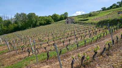 """Poncin et sa région - Randonnée - 46°4'58"""" N 5°26'22"""" E - 412,2m (Saint-Alban - Auvergne-Rhône-Alpes)"""