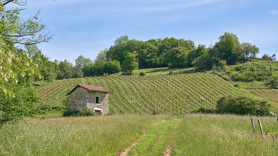 """Poncin et sa région - Randonnée - 46°5'17"""" N 5°26'5"""" E - 380,6m (Poncin - Auvergne-Rhône-Alpes)"""