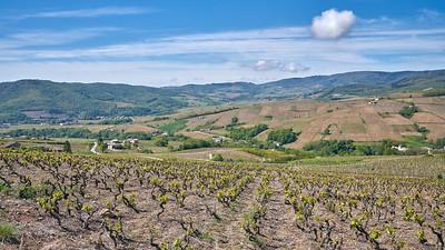"""Juliénas randonnée mai 2017 - 46°15'7"""" N 4°42'8"""" E - 443,3m (Juliénas - Auvergne-Rhône-Alpes)"""
