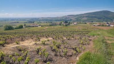 """Juliénas randonnée mai 2017 - 46°14'35"""" N 4°43'12"""" E - 332,5m (Juliénas - Auvergne-Rhône-Alpes)"""