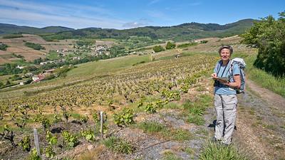 """Juliénas randonnée mai 2017 - 46°15'0"""" N 4°42'12"""" E - 426,8m (Juliénas - Auvergne-Rhône-Alpes)"""