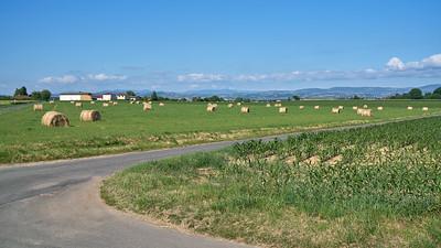 """Ars sur Formans - Randonnée - 45°58'40"""" N 4°49'32"""" E - 205,2m (Misérieux - Auvergne-Rhône-Alpes)"""