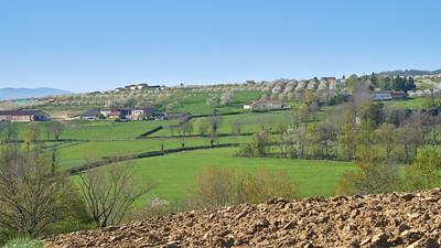 """Savigny et sa région. Randonnée - 45°48'21"""" N 4°33'18"""" E - 420,7m (Savigny - Auvergne-Rhône-Alpes)"""