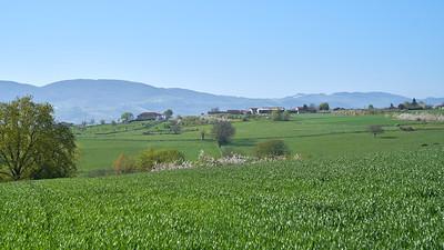 """Savigny et sa région. Randonnée - 45°48'18"""" N 4°33'37"""" E - 403,7m (Savigny - Auvergne-Rhône-Alpes)"""