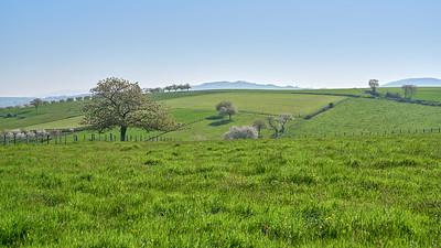 """Savigny et sa région. Randonnée - 45°48'22"""" N 4°33'40"""" E - 399,0m (Savigny - Auvergne-Rhône-Alpes)"""