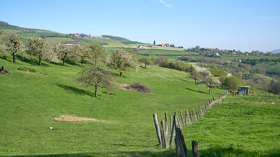 """Savigny et sa région. Randonnée - 45°48'29"""" N 4°33'52"""" E - 355,4m (Savigny - Auvergne-Rhône-Alpes)"""