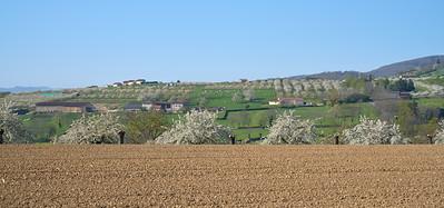 """Savigny et sa région. Randonnée - 45°48'21"""" N 4°33'24"""" E - 418,4m (Savigny - Auvergne-Rhône-Alpes)"""