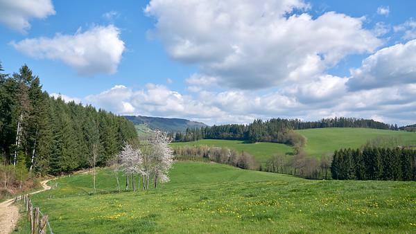 """Cublize / Ronno randonnée avril 2017 - 45°59'59"""" N 4°22'28"""" E - 483,9m (Ronno - Auvergne-Rhône-Alpes)"""