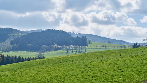 """Cublize / Ronno randonnée avril 2017 - 46°0'3"""" N 4°22'27"""" E - 470,3m (Ronno - Auvergne-Rhône-Alpes)"""