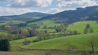 """Cublize / Ronno randonnée avril 2017 - 45°59'53"""" N 4°22'33"""" E - 515,1m (Ronno - Auvergne-Rhône-Alpes)"""