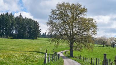 """Cublize / Ronno randonnée avril 2017 - 45°59'33"""" N 4°23'5"""" E - 577,3m (Ronno - Auvergne-Rhône-Alpes)"""