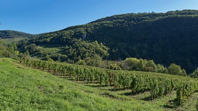 20190929 Jujurieux randonnée (Jujurieux/Auvergne-Rhône-Alpes/France - N46°02.222' E5°25.775' - Altitude : 400.60)