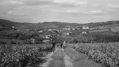 20210925 Juliénas randonnée (Crêches-sur-Saône/Bourgogne-Franche-Comté/France - 46° 14.904' N 4° 43.646' E - 317.70m)