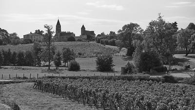 20210925 Juliénas randonnée (Crêches-sur-Saône/Bourgogne-Franche-Comté/France - 46° 15.307' N 4° 45.397' E - 240m)