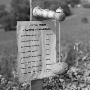 20210925 Juliénas randonnée (Crêches-sur-Saône/Bourgogne-Franche-Comté/France - 46° 15.602' N 4° 45.511' E - 284.40m)