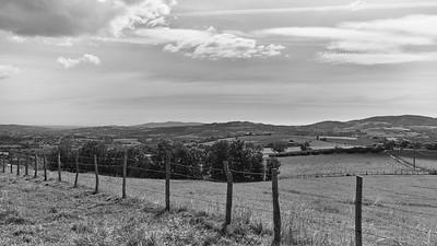 20200531 Savigny randonnée (Filtre vert) (/Savigny/Auvergne-Rhône-Alpes/France - N45°48.400' E4°33.208' - Altitude : 426.96m)