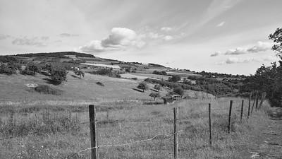 20200531 Savigny randonnée (Filtre vert) (/Savigny/Auvergne-Rhône-Alpes/France - N45°48.498' E4°33.881' - Altitude : 350.21m)