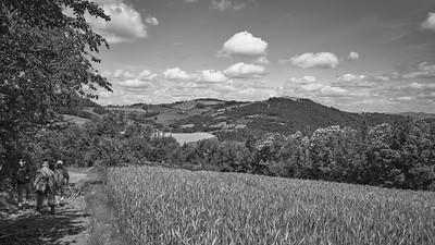 20200531 Savigny randonnée (Filtre vert) (/Saint-Romain-de-Popey/Auvergne-Rhône-Alpes/France - N45°49.197' E4°30.283' - Altitude : 644.27m)