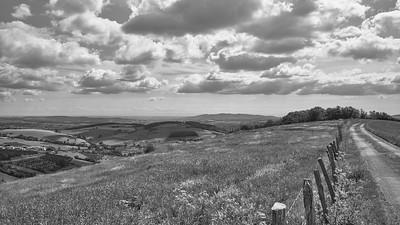 20200531 Savigny randonnée (Filtre vert) (/Saint-Romain-de-Popey/Auvergne-Rhône-Alpes/France - N45°49.008' E4°31.604' - Altitude : 572.94m)