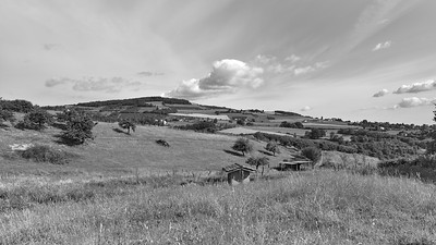 20200531 Savigny randonnée (Filtre vert) (/Savigny/Auvergne-Rhône-Alpes/France - N45°48.508' E4°33.891' - Altitude : 347.98m)