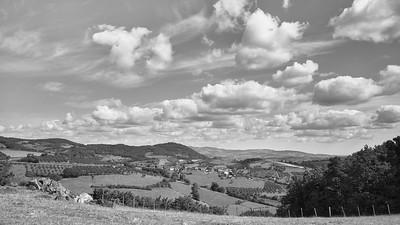 20200531 Savigny randonnée (Filtre vert) (/Savigny/Auvergne-Rhône-Alpes/France - N45°48.914' E4°32.101' - Altitude : 525.85m)